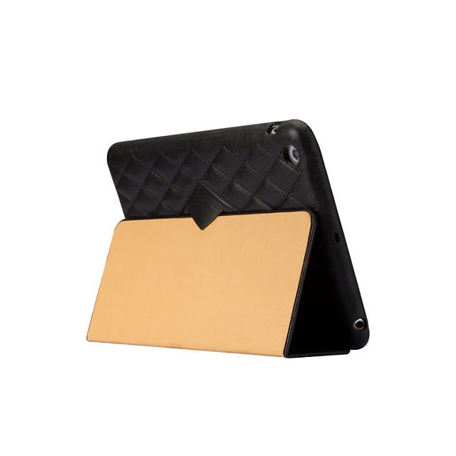 iPad Mini cases?-10-_th.jpg