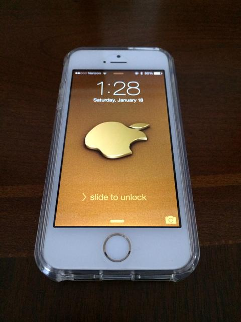 GOLD 5s Users, What case are you using?-imageuploadedbytapatalk1390543776.429181.jpg