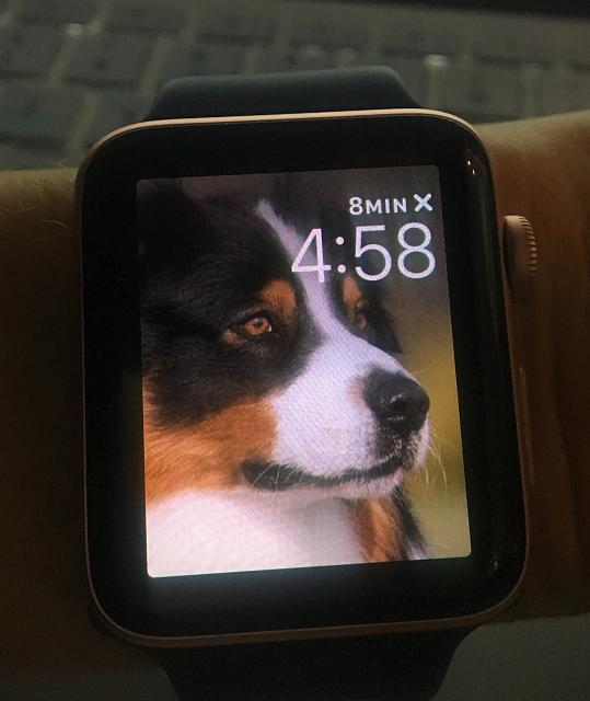 Post pics of your Apple Watch!-attachment-1.jpeg