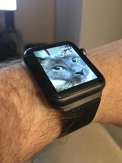 Show off your  Watch!-img_0183.jpg