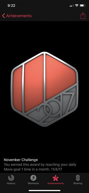 November Challenge Achievement-img_0079.jpg