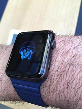Apple Watch Space Grey Sport with Leather Band and other Combination Thoughts-img_2454.jpg