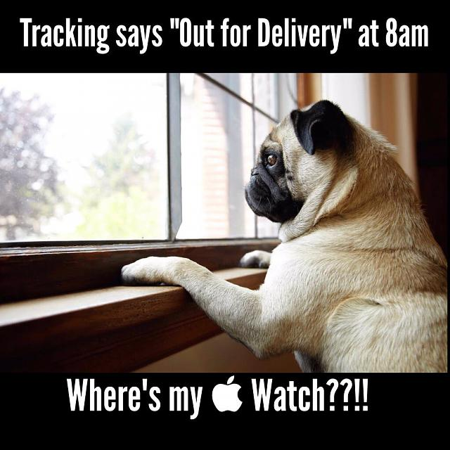 I got my apple watch!!-imageuploadedbyimore-forums1429843673.069756.jpg