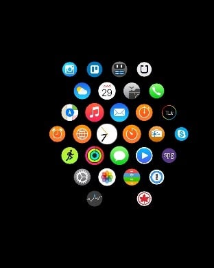 What's on your Apple Watch home screen?-img_5871.jpg