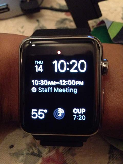 42mm SS with Black Leather Loop band:  What's the status of your order?-imageuploadedbyimore-forums1431663322.548872.jpg