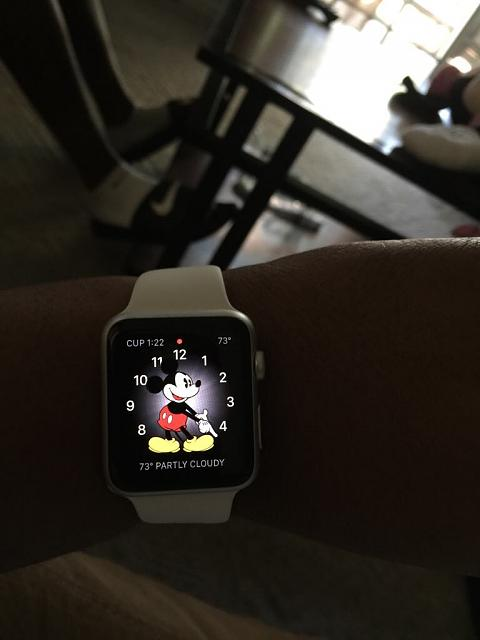 Show off your Apple Watch!-imageuploadedbyimore-forums1436214157.883793.jpg