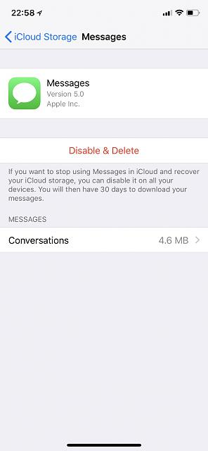 "Messages in the cloud. What does ""conversation"" mean in settings-4a481670-7d9a-4fcd-a67e-49db0f1e32e5.jpeg"