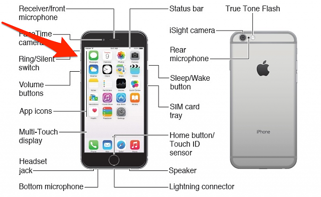 Where is the mute button on the iPhone 6?  Phone won't ring. It may be muted.-muteswitch.png