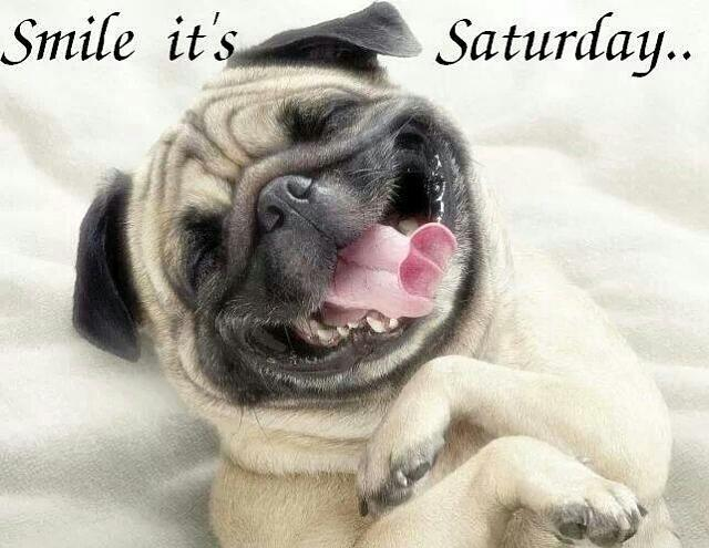 The last post wins!-81451-smile-its-saturday.jpg