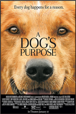 What's the last movie you watched.-dogs_purpose_poster.png