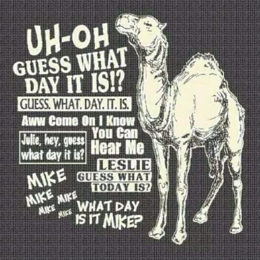Guess what day it is!!  Come on, what day is it???-camel-hump-day.jpg