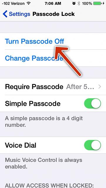 how to turn off your data on iphone 5c