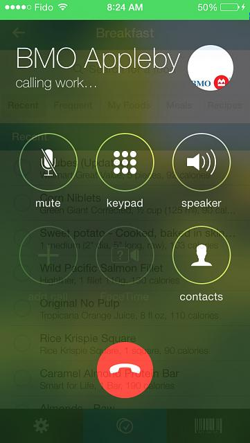 Looking to the Future: iOS 8 and Beyond-call.jpg