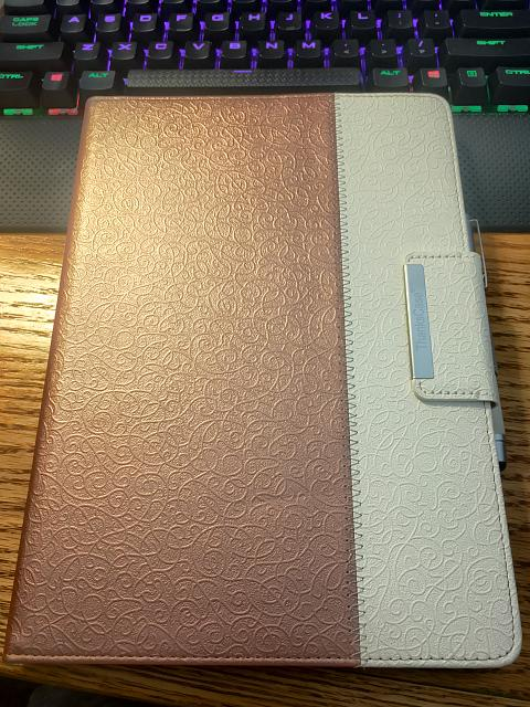 What case will you use on your iPad-81770f77120e41028707b4d69a8bfa29.jpg