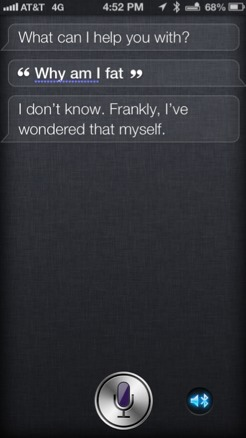 Ohhhh Siri....how we do love you!!-imageuploadedbyimore-forums1354920819.536957.jpg