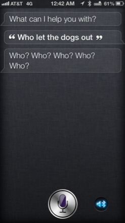 Ohhhh Siri....how we do love you!!-imageuploadedbyimore-forums1354949774.979323.jpg