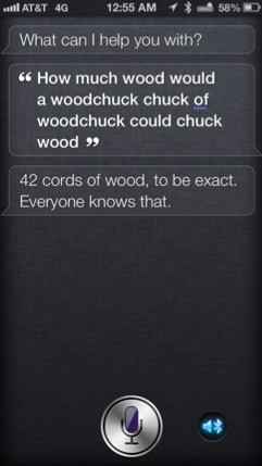 Ohhhh Siri....how we do love you!!-imageuploadedbyimore-forums1354949805.095427.jpg