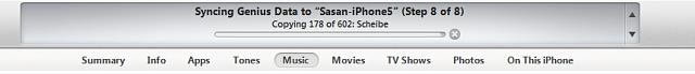 Syncing iphone 5 with new itunes - I just want to sync music and nothing else/-itune-sync.jpg