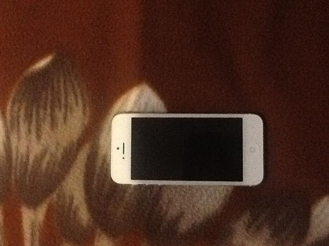 Moving back to the iPhone.-image.jpg