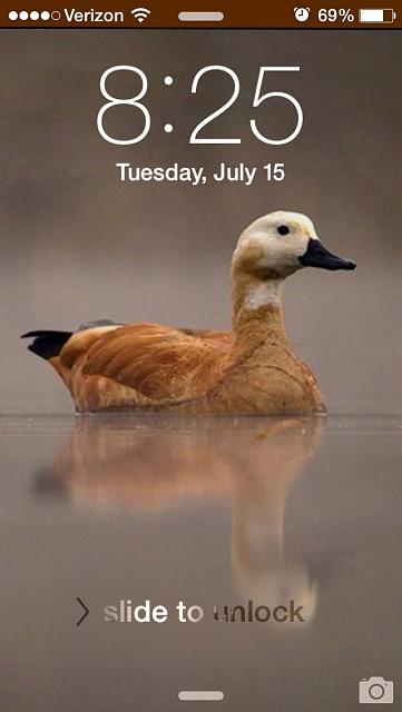 Show us your iPhone5 LOCK Screen-imageuploadedbytapatalk1405430778.633980.jpg
