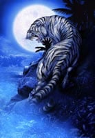 iPhone 6/6s/7 Plus Wallpaper Request Thread-tiger-moon.jpg
