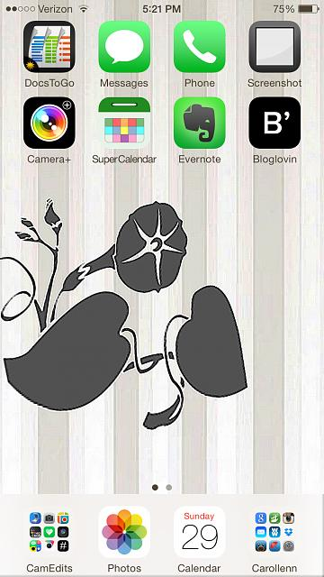 Show us your iPhone 6 Homescreen-photo-mar-29-5-21-03-pm.jpg