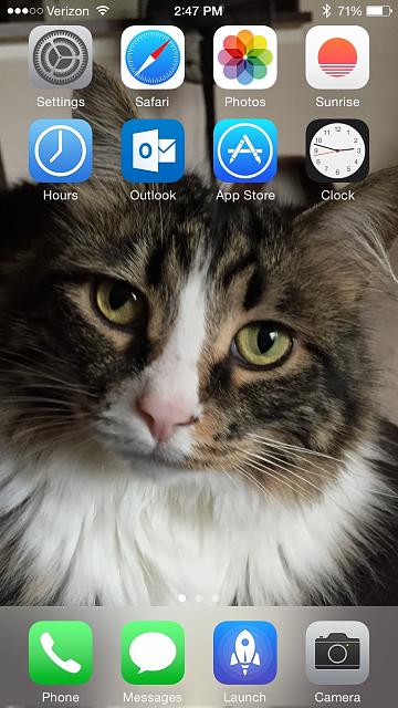 Show us your iPhone 6 Homescreen-img_0153.jpg