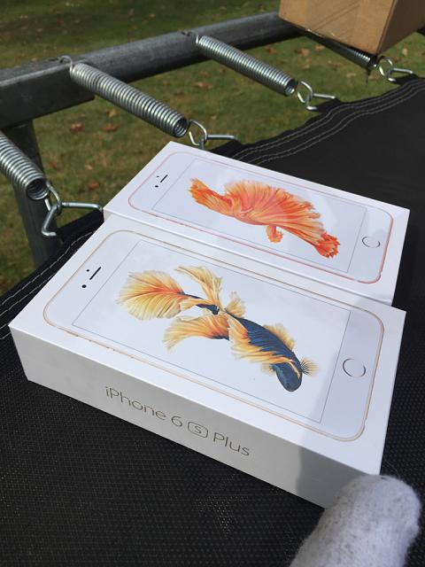 Pictures taken from your iPhone 6s Plus-imageuploadedbyimore-forums1443236959.546817.jpg