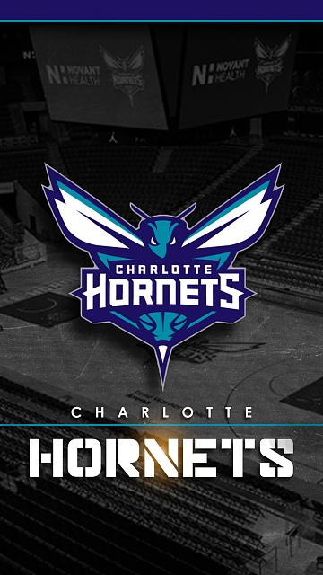 Sports Wallpapers.......Some Request when I have time.-hornets.jpg