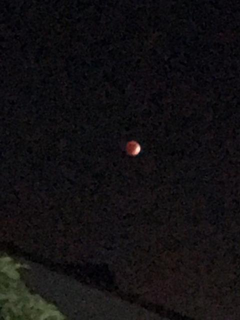 Any eclipse pics with the new iPhone?-imageuploadedbytapatalk1443416250.808292.jpg