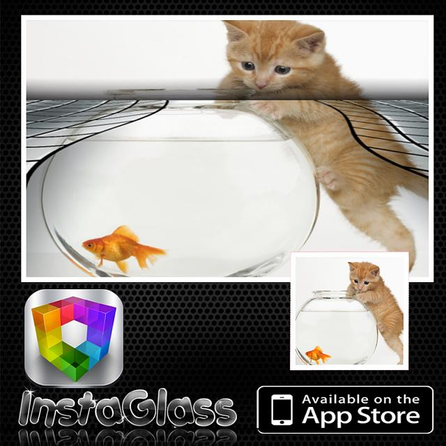 GlassCamera for iOS lets you take photos through customized lenses glasscamglasscam Posts: 1New User-instaglass_screenshot.jpg