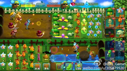 Plants vs Bugs battle online! .... Battle on line-b6519261gw1el9ifacpbyj20vk0hsdnj.jpg