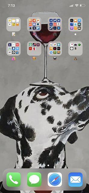 Show Us Your New iPhone X Home Screen-img_0006.jpg