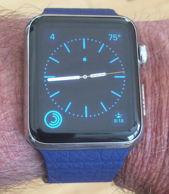 OEM 42mm Bright Blue Leather Loop - Medium-img_1090.jpg