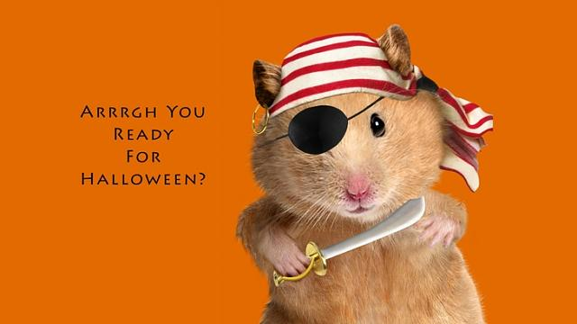 The iMore 20K / 50K Post Challenge - Are you up for it?-pirate-halloween-hamsters-1920x1080-wallpaper_www.wallpaperfo.com_35.jpg