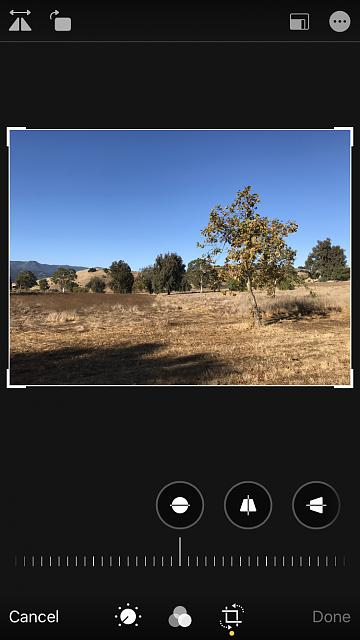 iPhone 13.1.3 internal photo editor - size of horizontal preview reduced for no apparent reason-img_1523.jpg