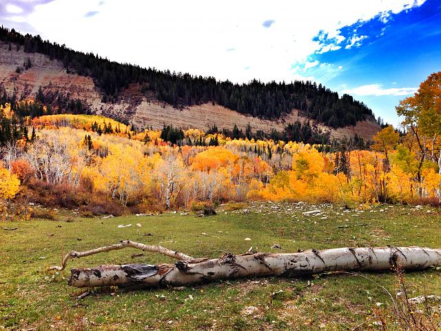 Weekly Photo Contest: Fall Colors!-manti_utah.jpg