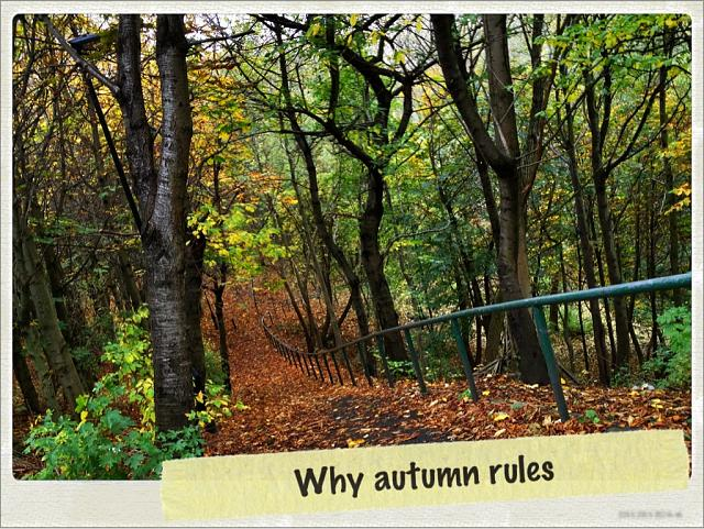 Weekly Photo Contest: Fall Colors!-imageuploadedbyimore-forums1351681465.026025.jpg