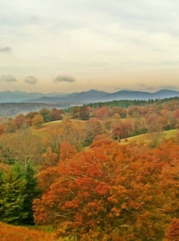 Weekly Photo Contest: Fall Colors!-imageuploadedbyimore-forums1351691157.130291.jpg