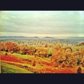 Weekly Photo Contest: Fall Colors!-imageuploadedbyimore-forums1351691248.265065.jpg