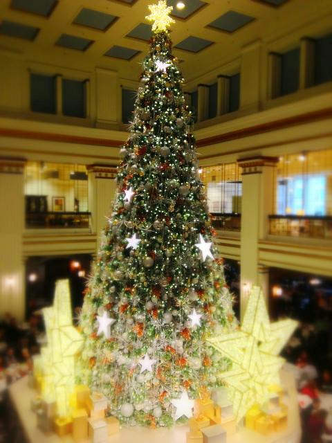 Weekly Photo Contest: Holidays!-photo-2012-12-21-07.59.19-am.jpg