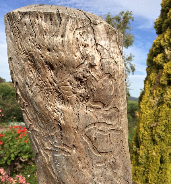 Weekly photo contest: Sticks and stones!-mclarenvale.jpg