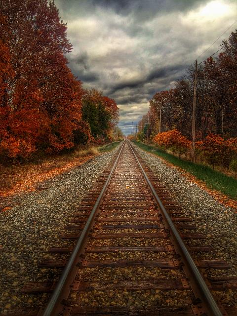 Weekly photo contest: Weather!-autumn-tracks.jpg