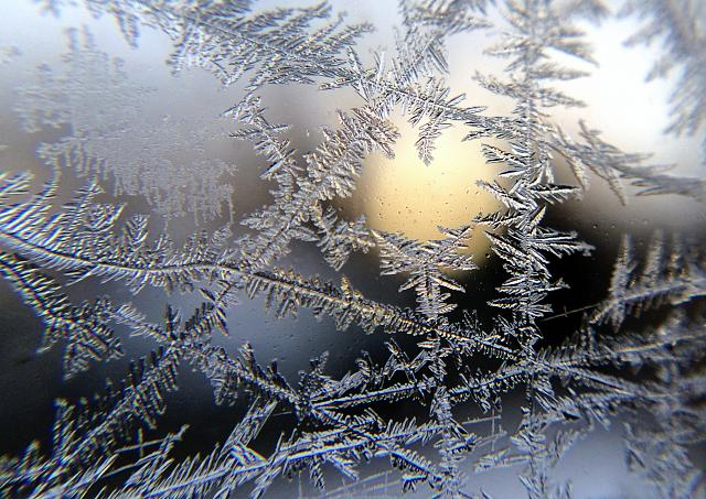 Weekly photo contest: Weather!-ice-crystals-window.jpg