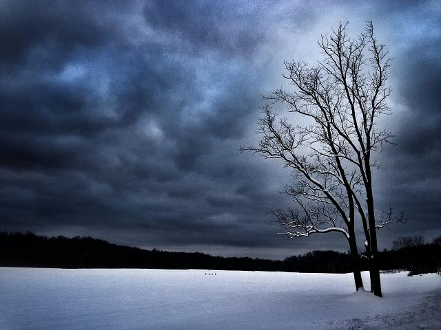 Weekly photo contest: Weather!-winters-desolation.jpg