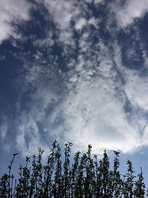 Weekly photo contest: Clouds!-2014-06-07-17.52.06.jpg