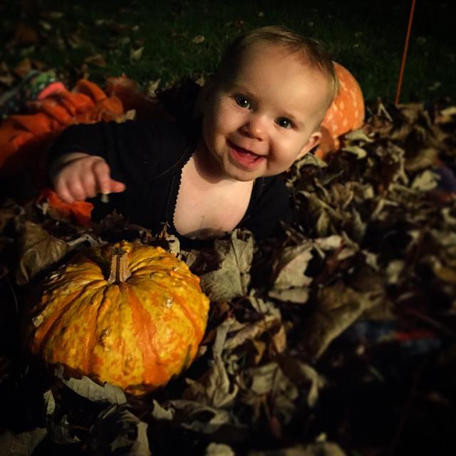 Weekly Photo Contest: Pumpkin!-imoreappimg_20141027_204932.jpg