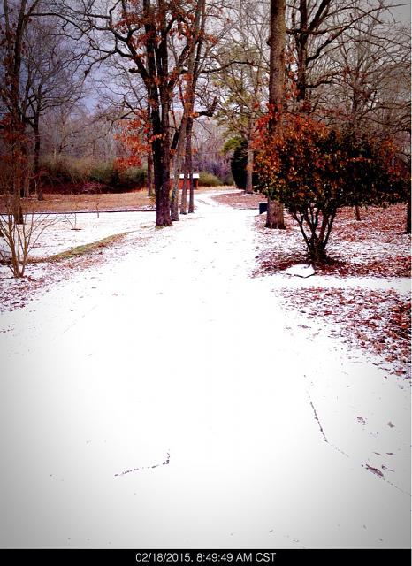 Post the very last (most recent) photo in your camera roll.-imageuploadedbytapatalk1424482988.376697.jpg
