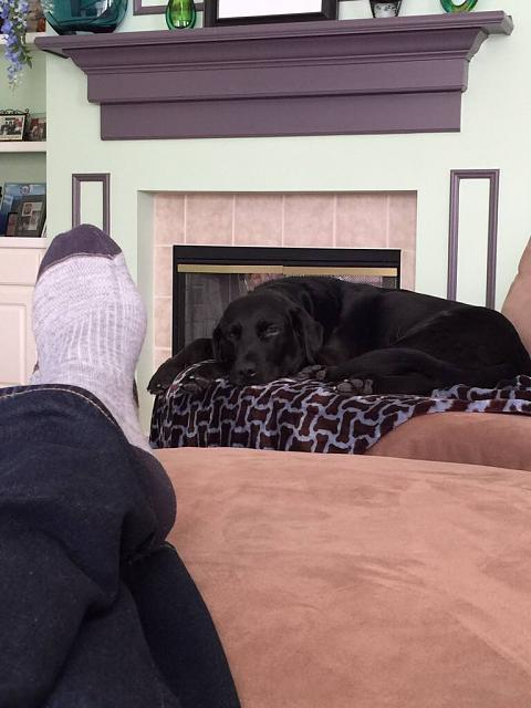 Post the very last (most recent) photo in your camera roll.-imageuploadedbyimore-forums1424695723.780393.jpg