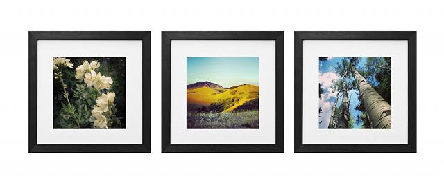 Win one of four prizes in our Instantly Framed Mega Giveaway!-nature_trio.jpg